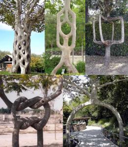 92518354_3437398_tree2_1_