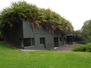 azotea-grandes-plantas