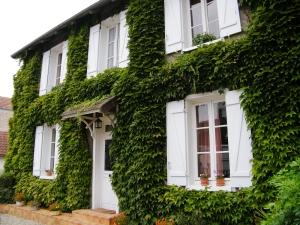 maisonfeuillette_facade