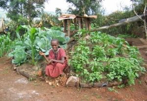 African_Gardens_Rwanda_keyhole_garden_Rose