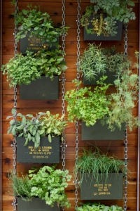 Ammo-Can-Vertical-Herb-Garden
