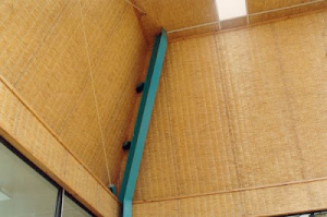 Ceiling-10-Pic0038_500_333_80
