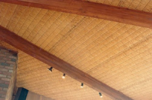 Ceiling-3-Pic0016_500_333_80