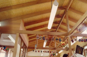 Ceiling-6-Pic0024_500_333_80