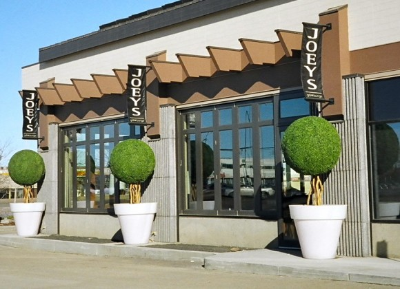 Greenscape-Design-Joeys-Restaurant-Edmonton-Exterior-UV-Treated-Boxwood-Balls-in-Illuminated-Planters-3-580x420