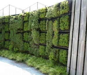 Vertical Herbs with Rill atlanta