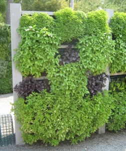 botanical-vertical