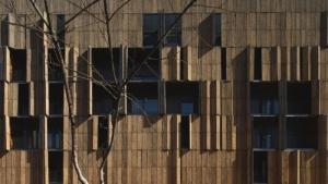 carabanchel housing bamboo