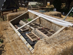 straw cold frame