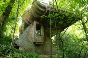 unusual-forest-home-1-554x368