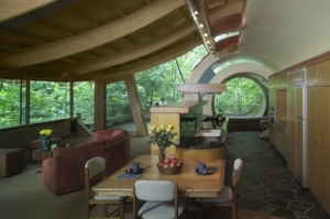 unusual-forest-home-4-554x368