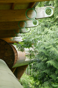 unusual-forest-home-5