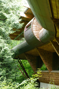 unusual-forest-home-6