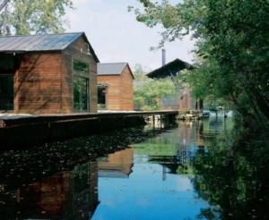 Lake-Austin LakeFlato-Architects-swamp-behind-the-house