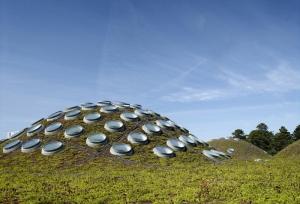 california-living-roof