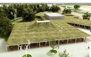 green roofed school