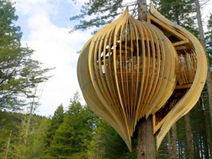 treehouse nz