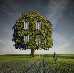 treehouse poland
