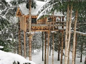 treehouse tiny