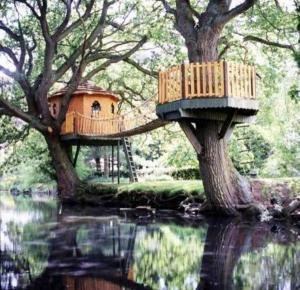 treehouse_moat