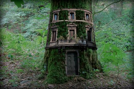 123house-tree