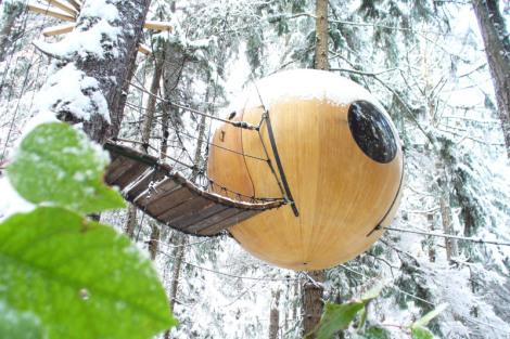 free-spirit-spheres-rainforest-of-vancouver-island-canada