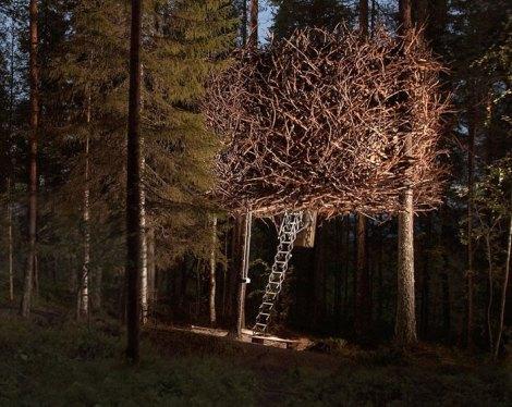 the-birds-nest-sweden