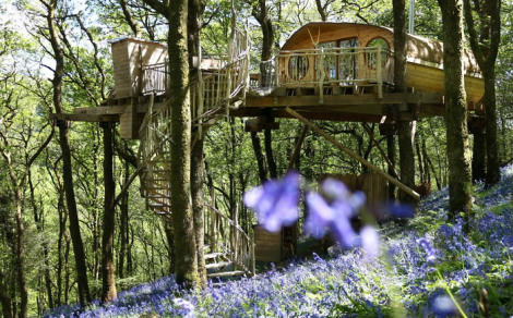 treehouse-in-wales-uk-architect-peter-canham-tagliare
